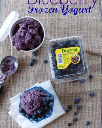 Top view of a pint of blueberry frozen yogurt, glass dish and a pint of bleuberries.