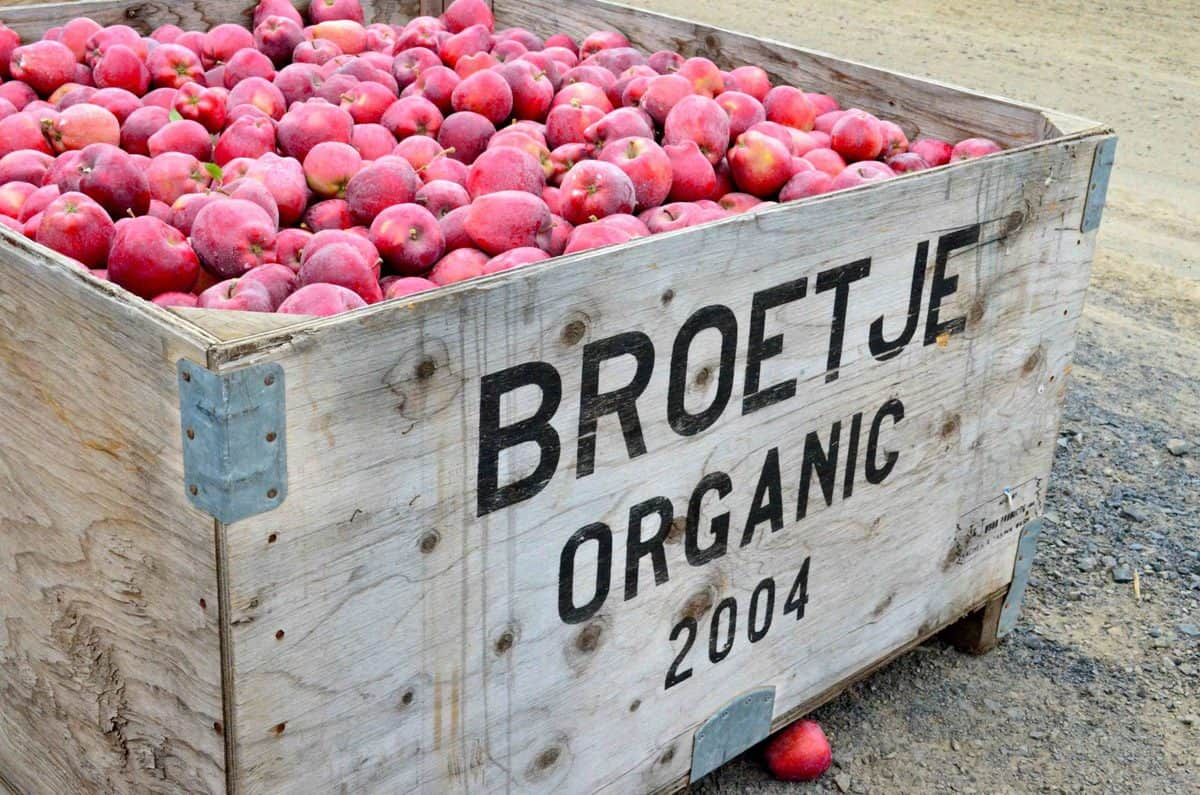 Broetje Orchards - Washington State from KatiesCucina.com