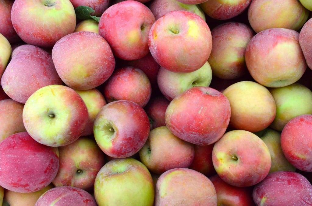 Broetje Orchards 2