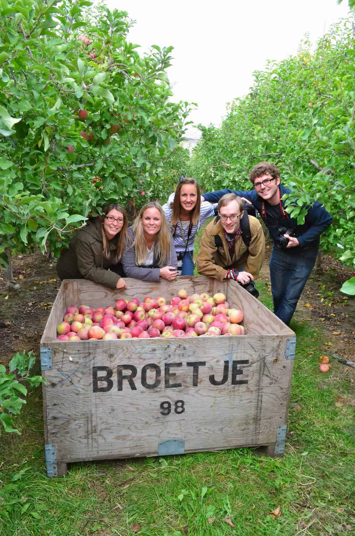 3 women and two men hunched over a crate of Broetje apples in an orchard.