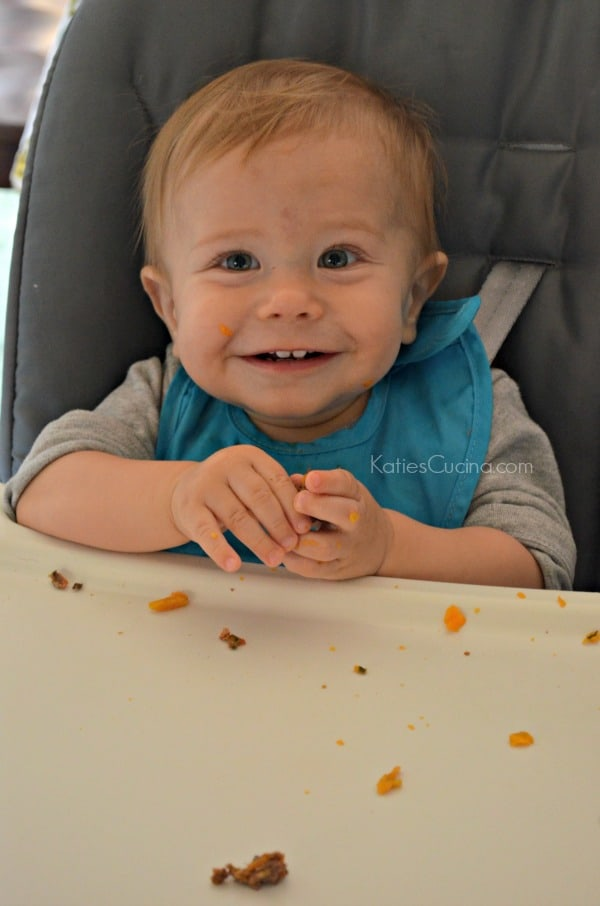 Cute Baby Approved- Beef Meatballs
