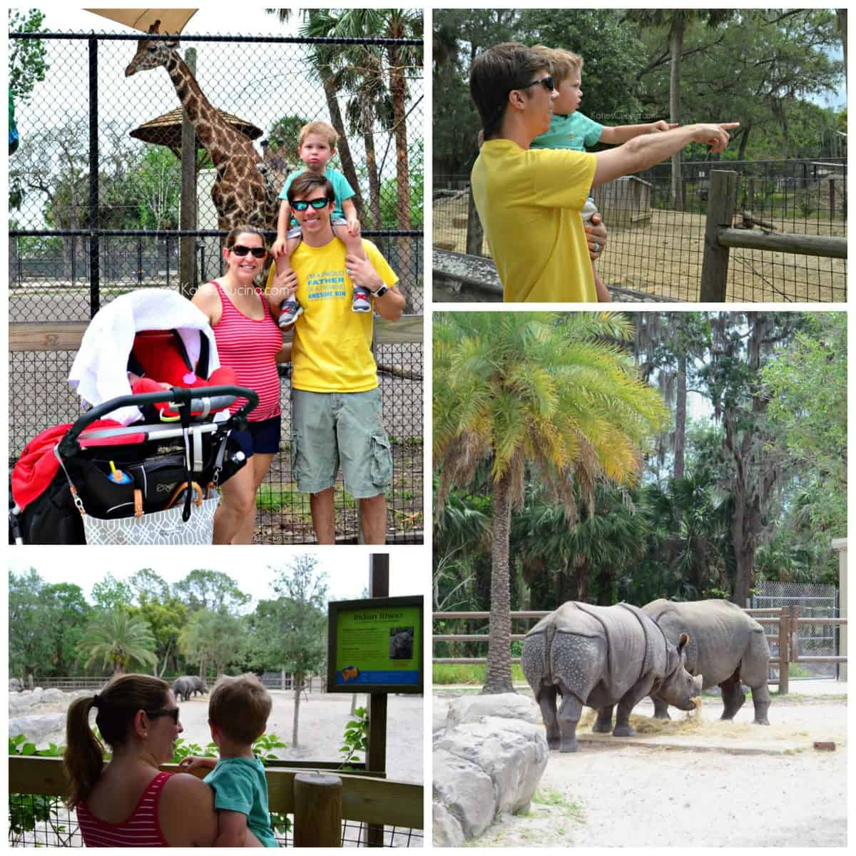 4 photo collage of mother, father, and son enjoying various views of rhinos and giraffes at the zoo.