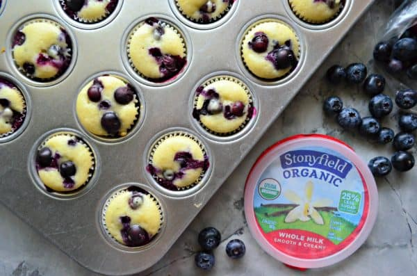 Mini Blueberry Yogurt Muffins