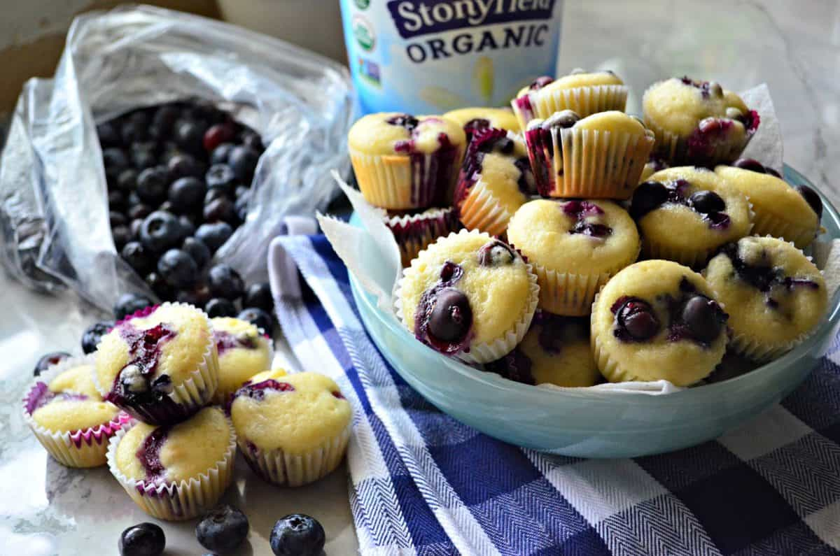 mini blueberry yogurt muffins in blue bowl and on countertop in front of bag of fresh blueberries.