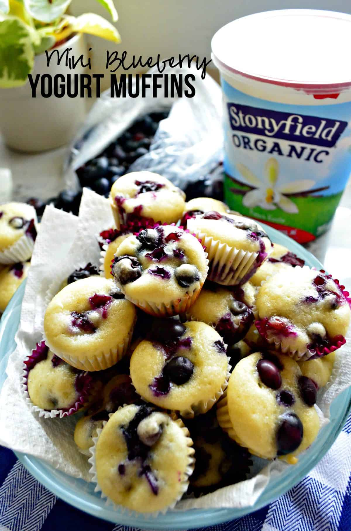blue plate stacked high with min blueberry muffins in front of stonyfield organic yogurt with title text.