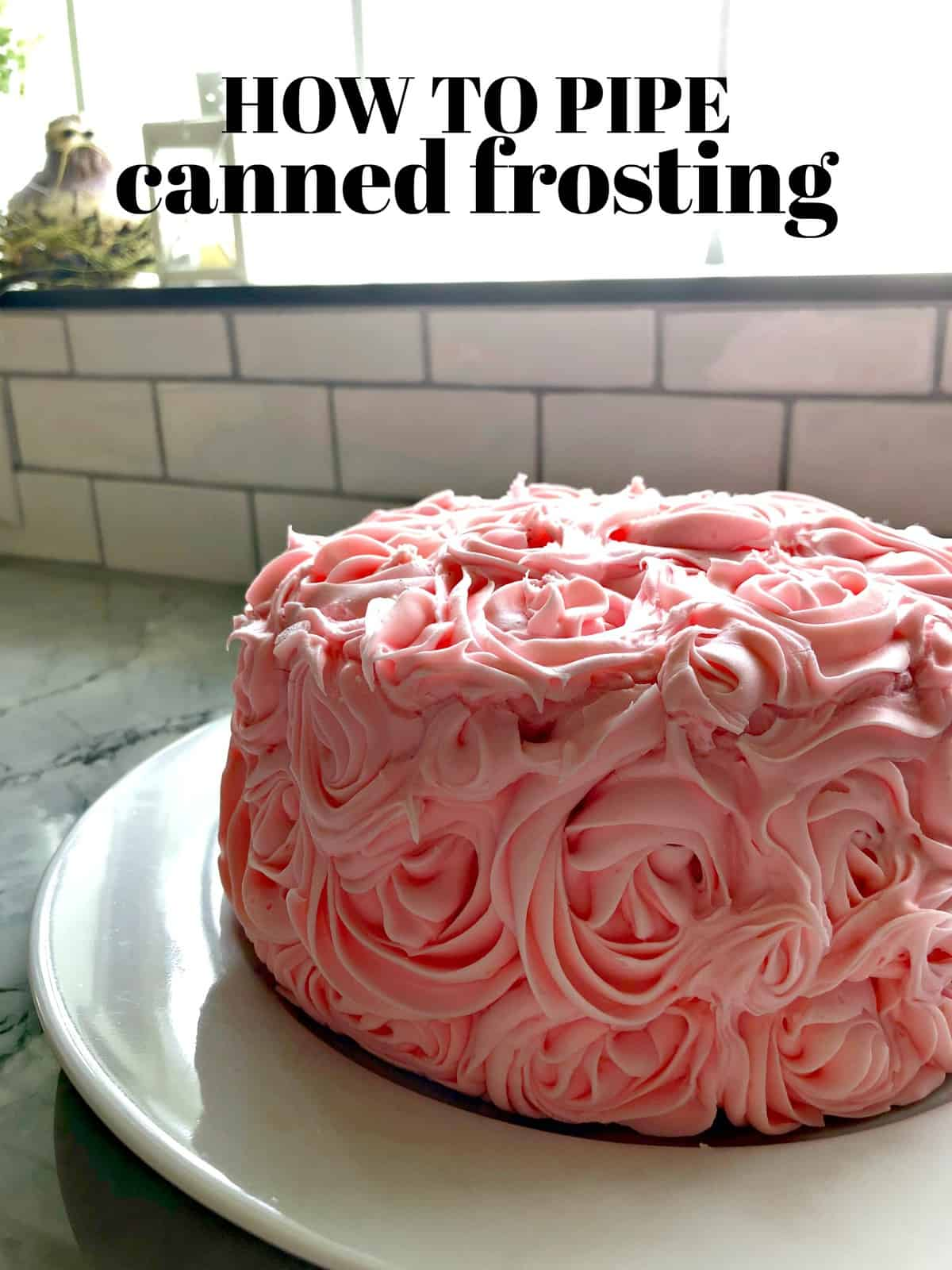 How to Pipe Canned Frosting
