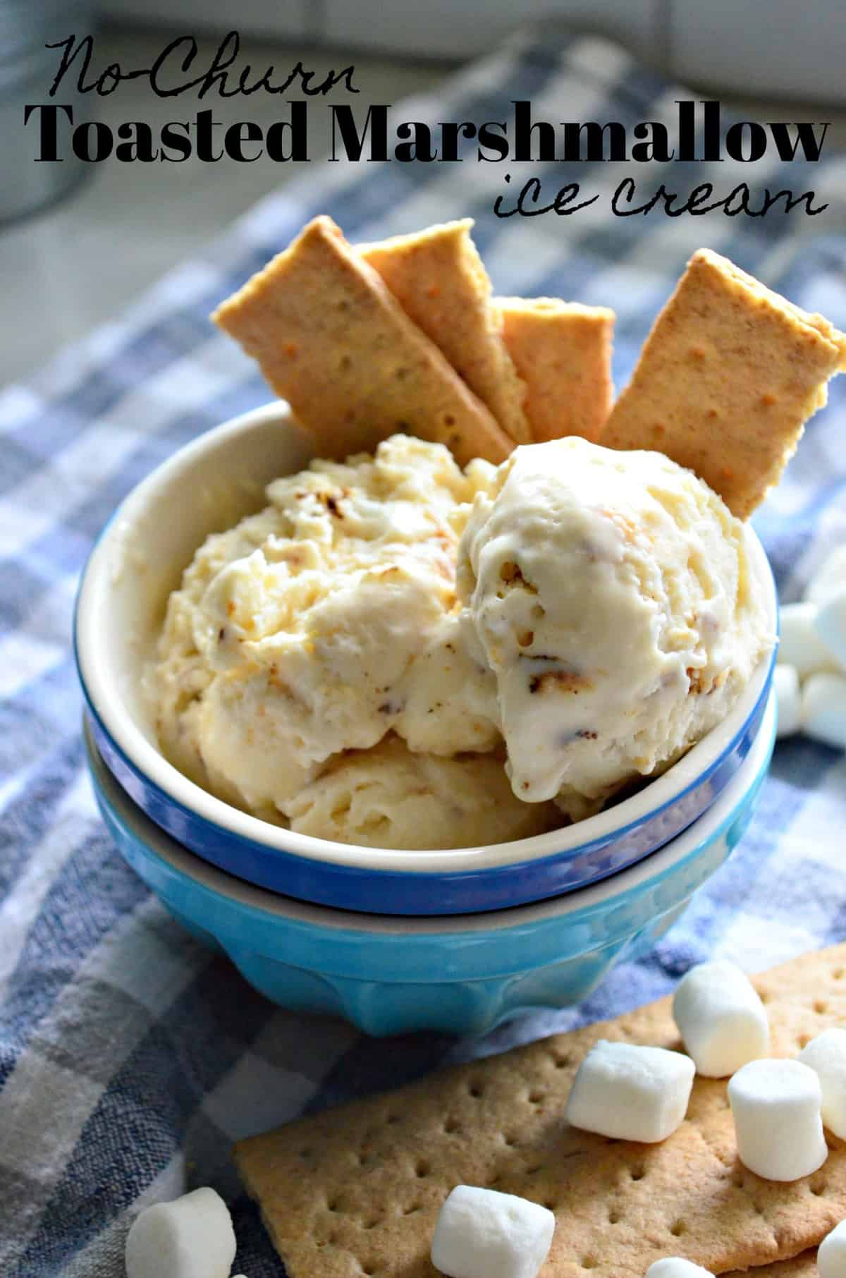 Closeup bowl of creamy colored chunky ice cream with graham crackers and title text.