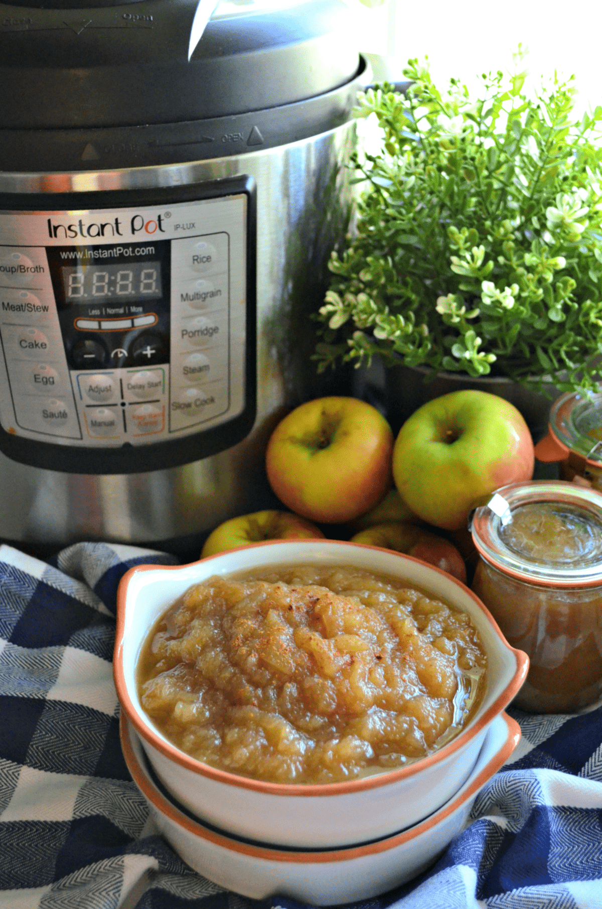 Bowl of applesauce with cinnamon with apples and instant pot in background.