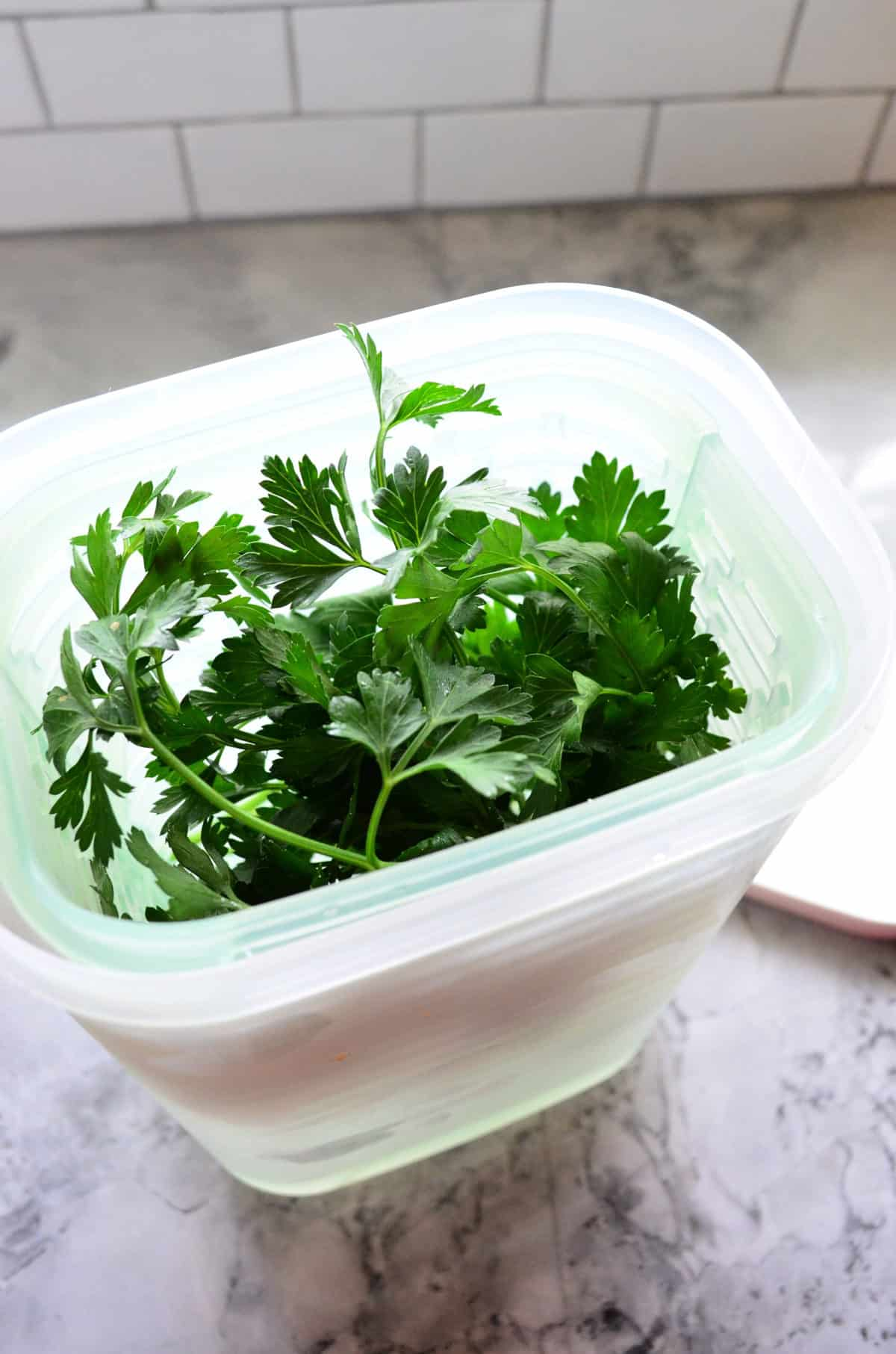 top view of parsley in container.