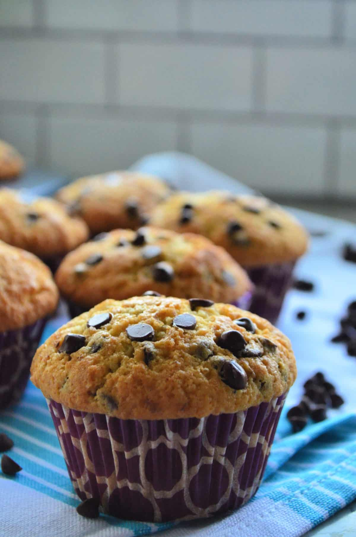 side view of chocolate chip muffin on blue cloth scattered with chocolate chips and muffins in background.