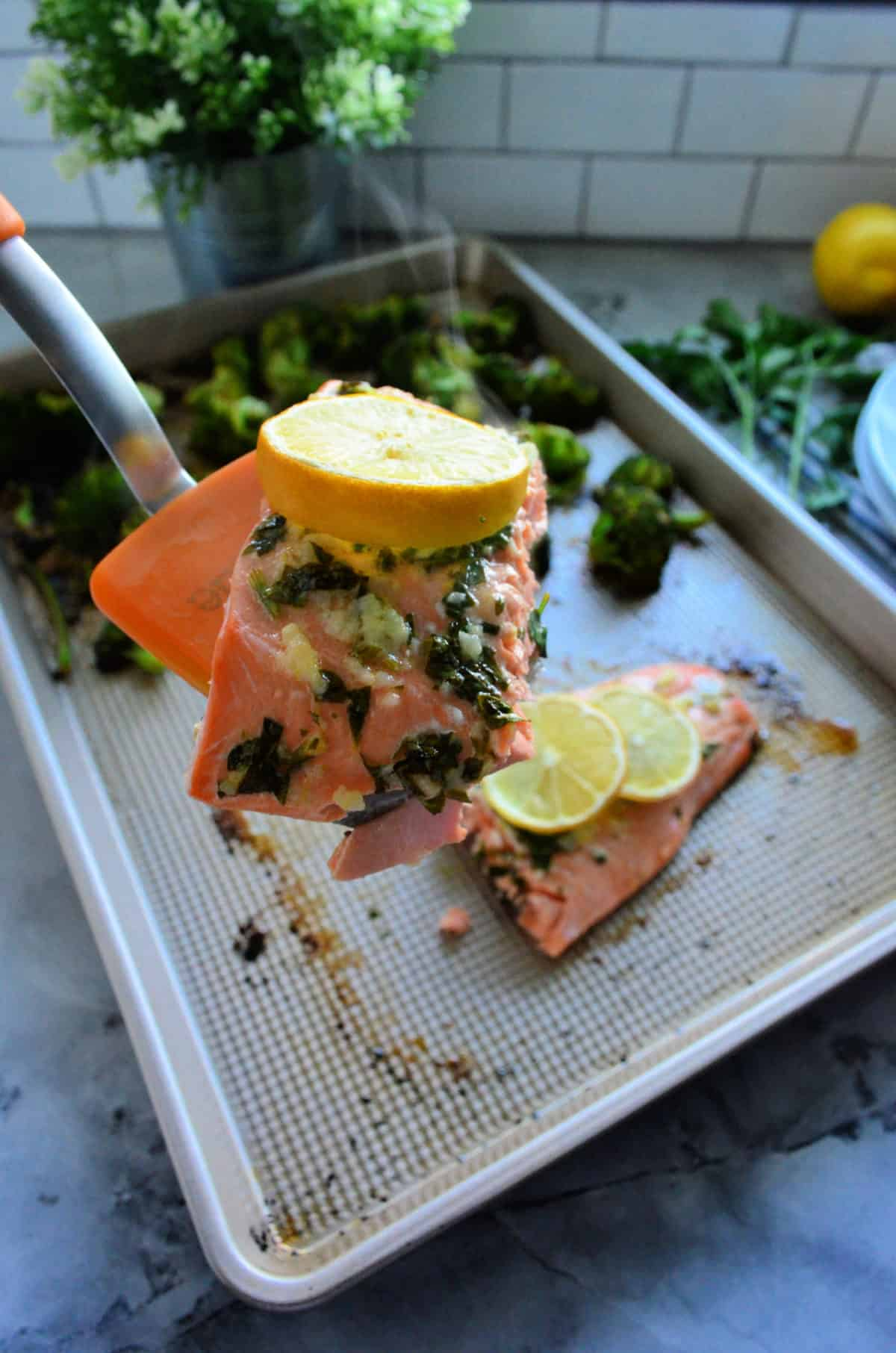 spatula holding herb-buttered salmon topped with lemon wheel over pan of remaining salmon.