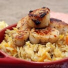 Pumpkin Spiced Alaskan Scallops over Butternut Squash Orzo.