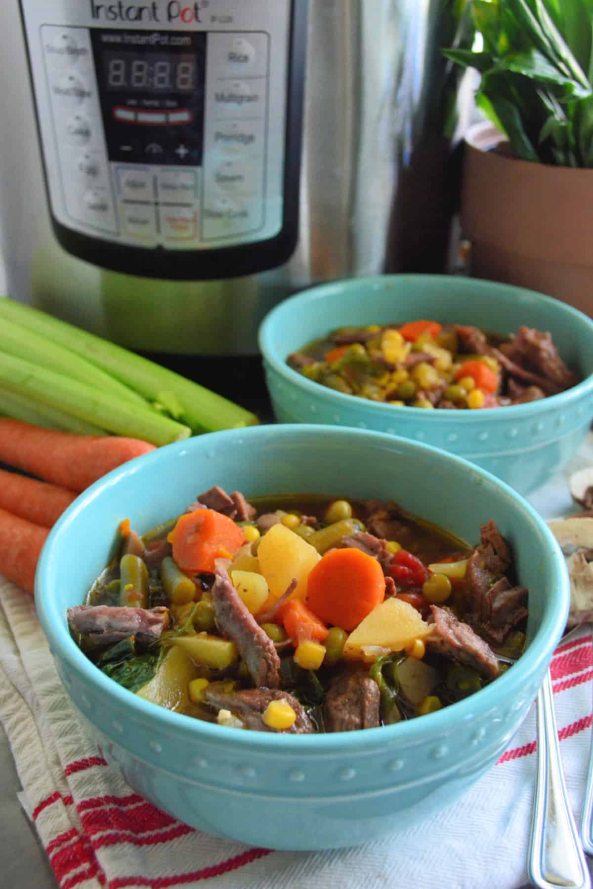 Two bowls Vegetable Beef Soup next to fresh celery and carrots with Instant Pot in the background.