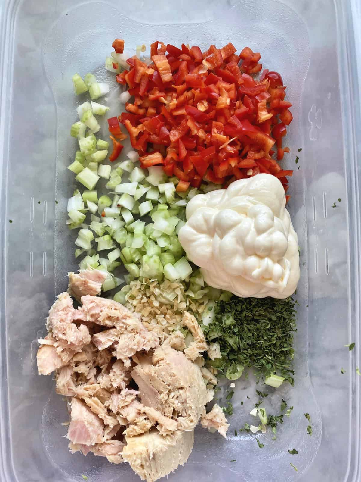 Top view tuna fish, dried onion, parsley, celery, bell peppers, and mayo in tupperware.