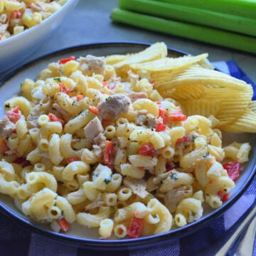 Side View Macaroni and Tuna Fish Salad served with Potato Chips placed decoratively near celery.