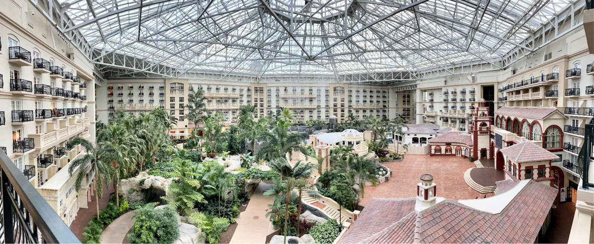 Overlooking atrium at the Gaylord Palms hotel with lush vegetation and pathways.