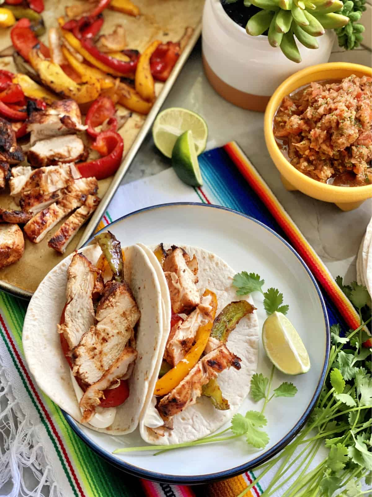 Top view of grilled chicken and peppers in two flour tortilla on a plate with salsa next to it.