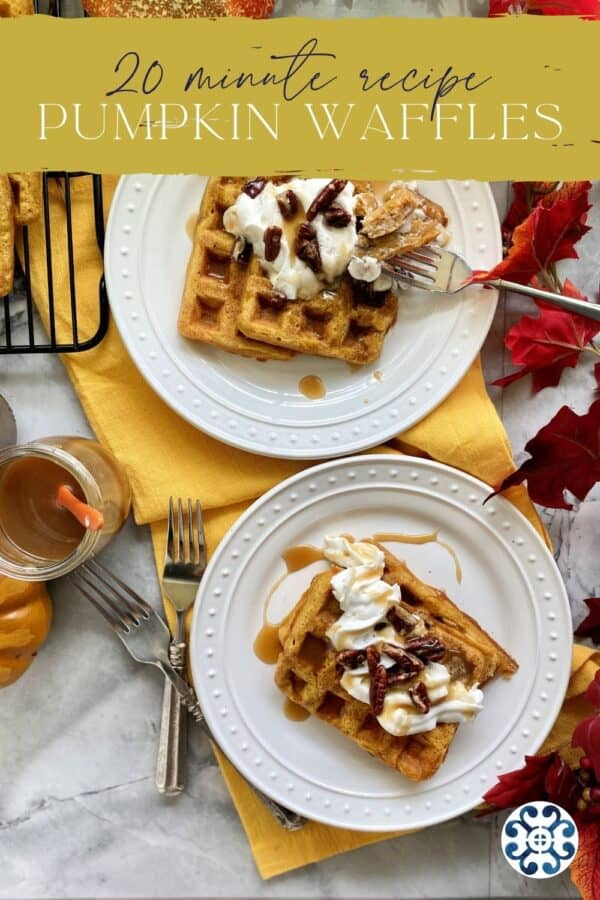 Top view of two plates of waffles with text on image for Pinterest.