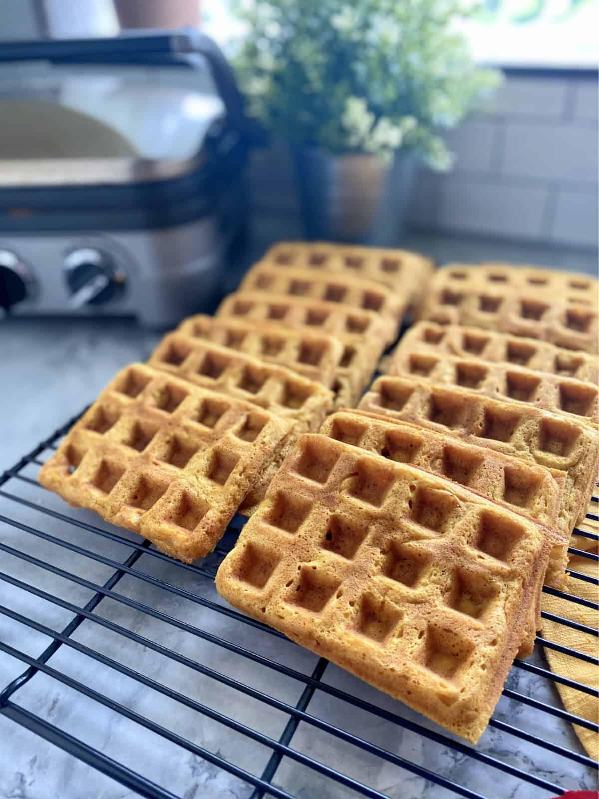 Rectangular waffles stacked on a black wire rack.