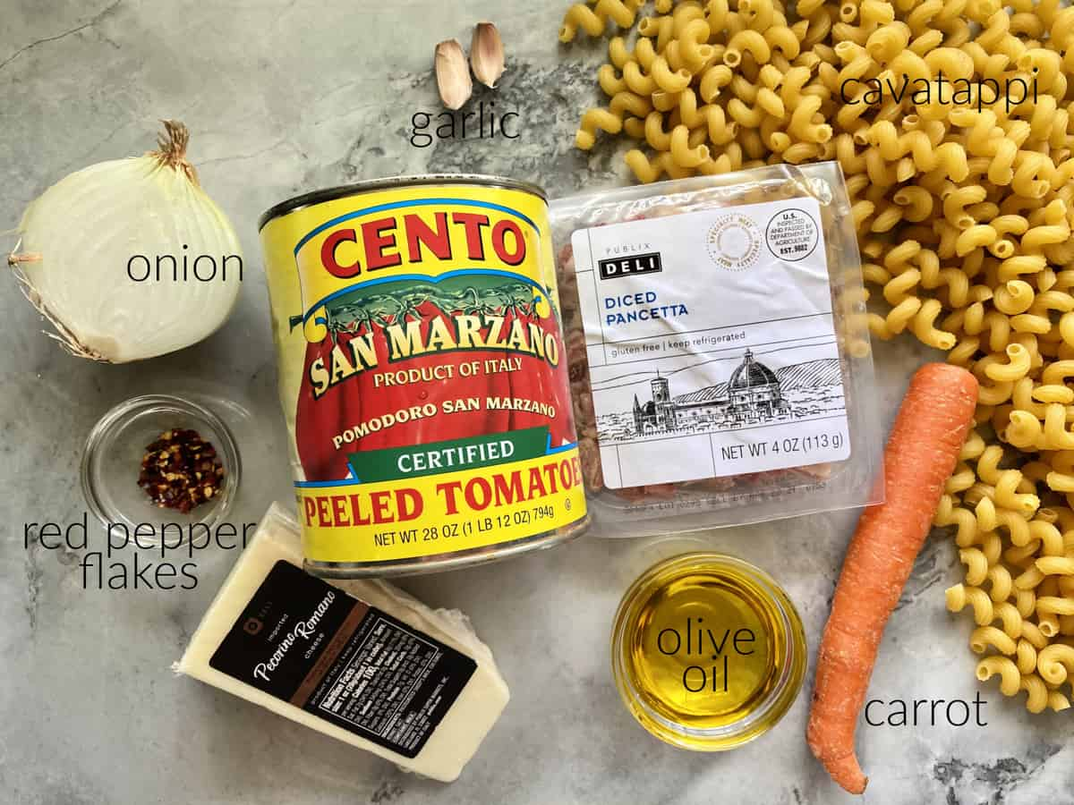 Ingredients: onion, red pepper flakes, pecorino romano, garlic, peeled tomatoes in can, diced pancetta, olive oil, carrot, and cavatappi pasta.