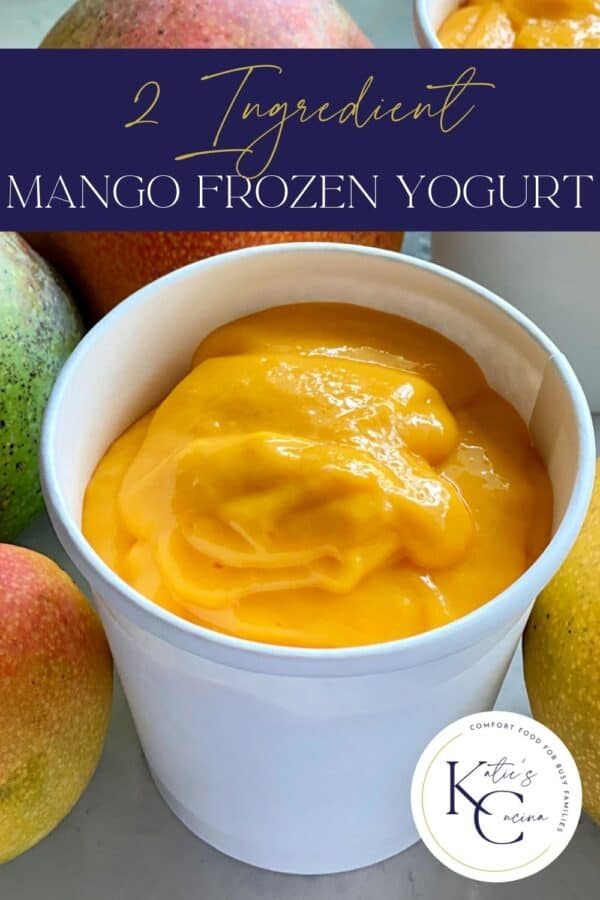 White container filled with orange soft serve yogurt with recipe title text on image for Pinterest.