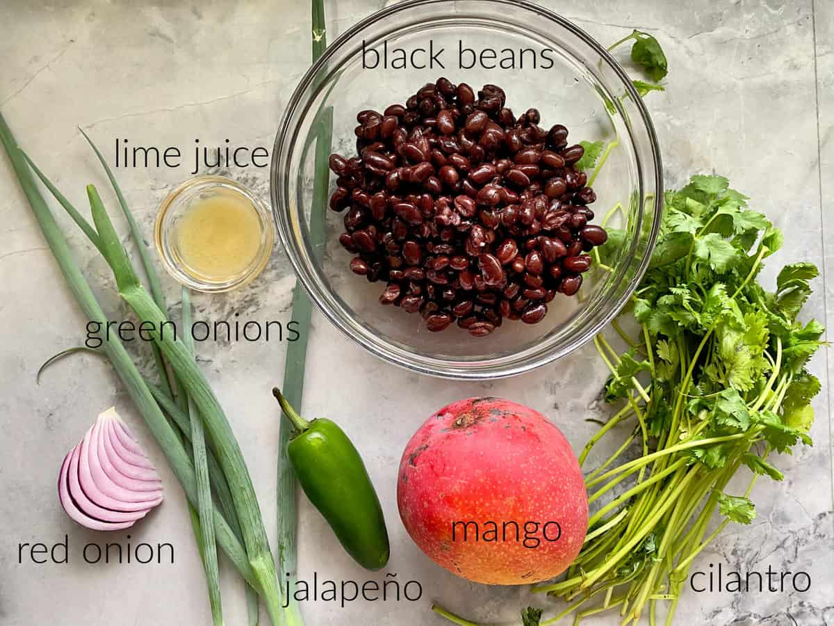 Ingredients on marble countertop: black beans, green onions, red onion, jalapeno, mango, cilantro, and lime juice.