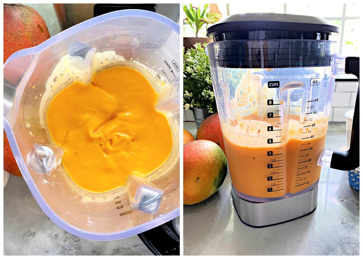 Top view of pureed mango in a blender, right photo of pureed Mango Frozen Yogurt.