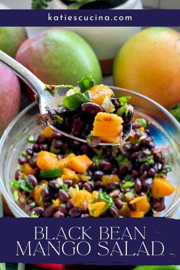 Spoon holding a scoop of black bean mango salad over a bowl with recipe title text on image.