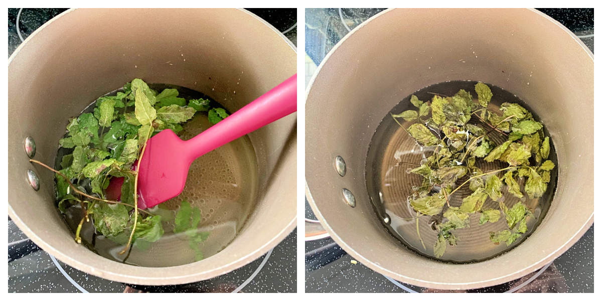 Two photos split; left of fresh mint leaves in liquid pot, right of wilted mint leaves in pot.