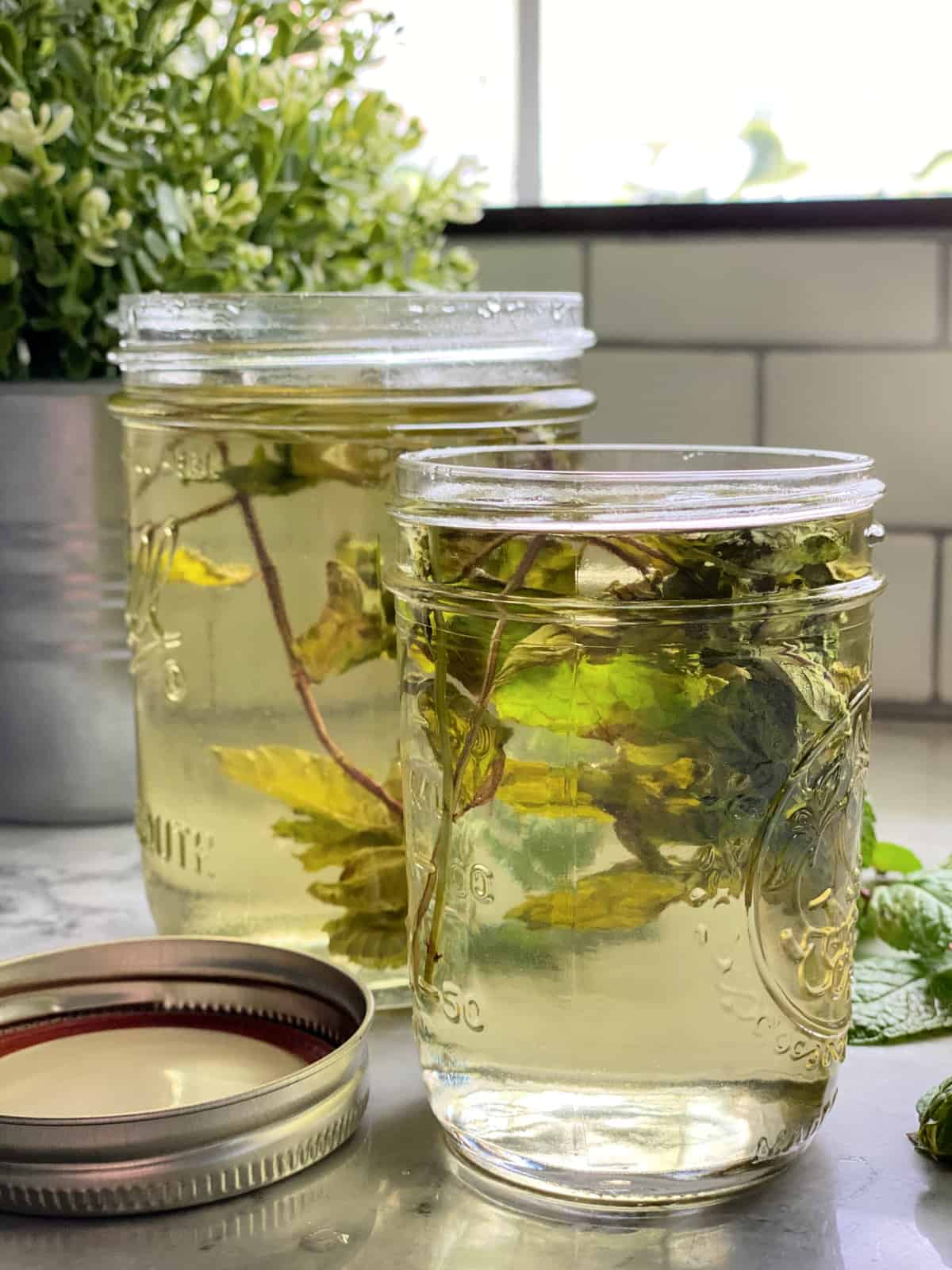 Two mason jars filled with mint sprigs and liquid.